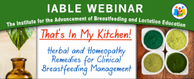 Herbal Remedies Webinar